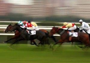 แทงม้าแข่ง
